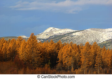 Autumn landscape with snow-capped mountains