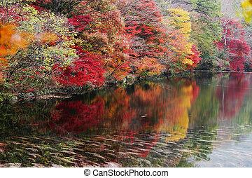 Autumn landscape with temples in south korea, seonunsa