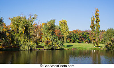 Autumn landscape with trees by the water.