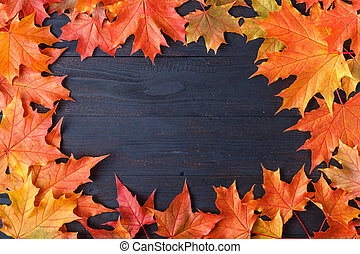 Autumn leaf composition for picture frame. Copy space.