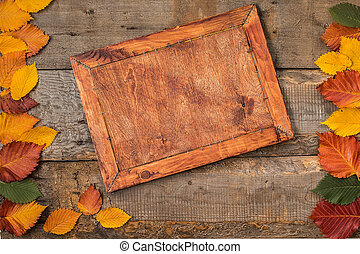 Autumn leaf composition with frame. Copy space.