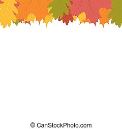 Autumn leaf on a white background