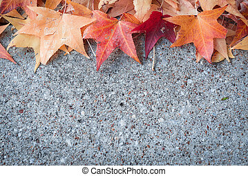 autumn leaf on concrete floor
