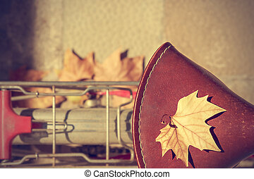 Autumn leaf over the saddle.