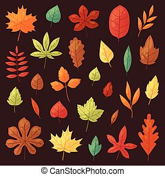 Autumn leaf vector autumnal leaves falling from fallen trees leafed oak and leafy maple or leafing foliage illustration fall of leafage set with leafage isolated on background
