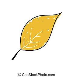 Autumn leaf vector illustration on white background