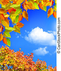 Autumn leaves against a blue sky with clouds