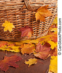 Autumn leaves and basket