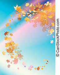 Autumn leaves and beautiful sky