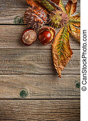 Autumn leaves and fresh chestnuts on wooden board