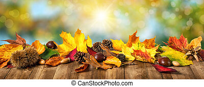 Autumn leaves and nature background