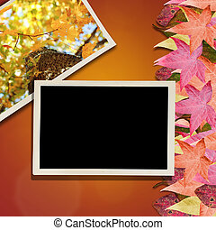 Autumn Leaves and Photo Background