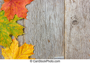 Autumn leaves and wooden planks