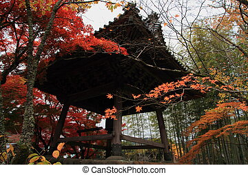 Autumn leaves at Shuzenji temple, Japan