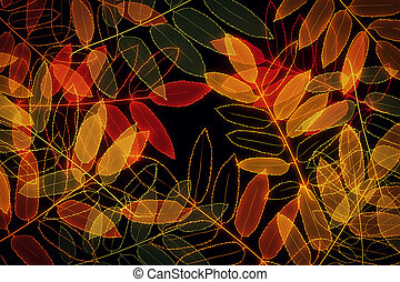 Autumn leaves backdrop