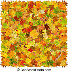 Autumn leaves background - Background of falling maple...