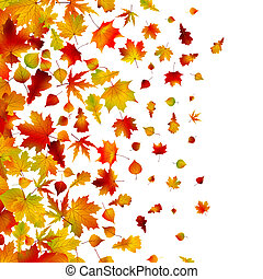 Autumn leaves, background. EPS 8