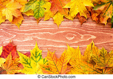 Autumn leaves background (frame)