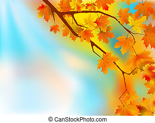 Autumn leaves background in a sunny