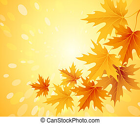 Autumn leaves background. Vector.