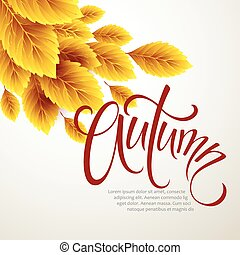 Autumn leaves background. Vector illustration