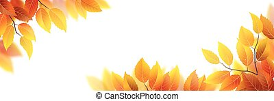 Autumn leaves banner - Banner with autumn leaves