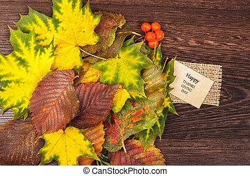 autumn leaves, bomen