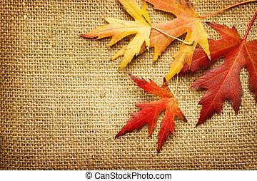 autumn leaves, burlap, op, achtergrond