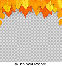 Autumn leaves. Design layout. Isolated on transparent background. Vector