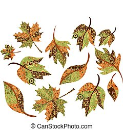 Autumn leaves  - Collection of different autumn leaves