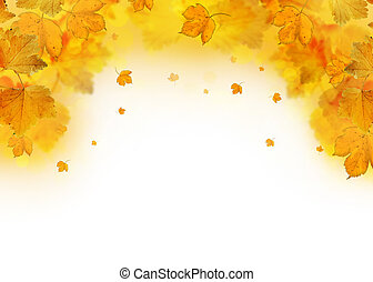 Autumn leaves falling frame