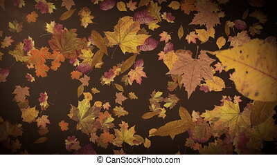 Autumn leaves falling slowly on defocused background. Fall season background seamless looping. Autumnal background.