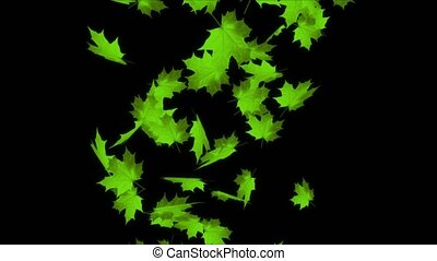 Autumn leaves falling Realistic 3D Alpha channel loop Animation. for your Broadcast Programs, business / art background, overlay, intro, logo, title, presentation, site, dvd,