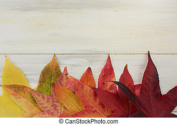 AUTUMN LEAVES FRAME ON A WHITE WOODEN BACKGROUND.