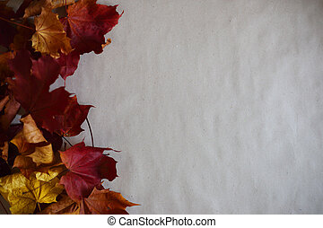 Autumn leaves frame on paper background
