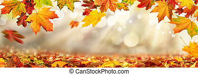 Autumn leaves framing blurred background with sunlight