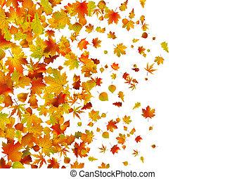 autumn leaves, gevallen, achtergrond