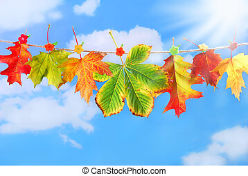 autumn leaves hanging on a rope against blue sky