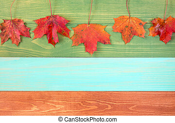 Autumn leaves hanging over wooden background