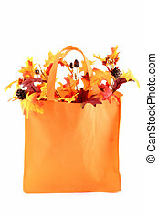 Autumn leaves in bag