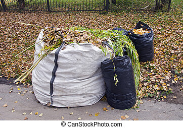 autumn leaves in white and black plastic sacks