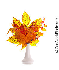 Autumn leaves isolated on a white background