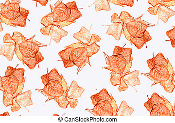autumn leaves isolated on white background.