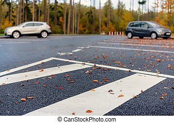 Autumn leaves lying in a parking lot