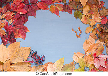 Autumn leaves of different colors on a wooden background