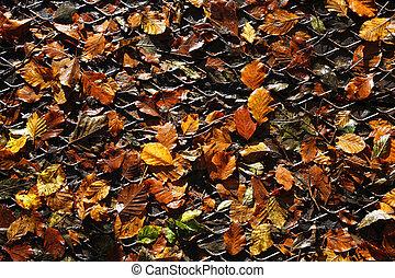 Autumn leaves on a metal grid