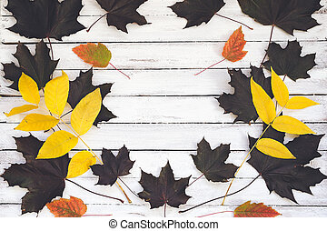 Autumn leaves on a wooden board, white background.