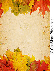 autumn leaves on an old paper