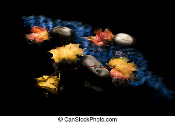 Autumn Leaves on black background with grey pebbles