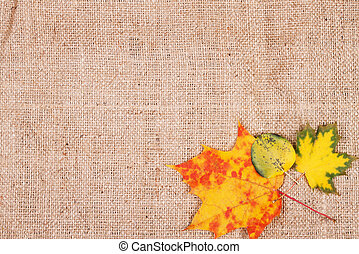 Autumn leaves on sackcloth background